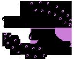 VeronicaChic.com Logo